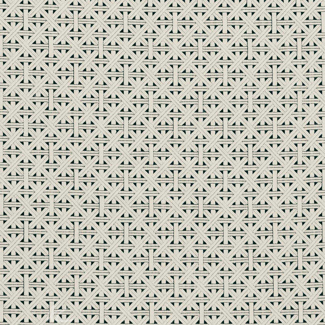 Clarke and Clarke  Colony Cabana Charcoal Curtain Fabric
