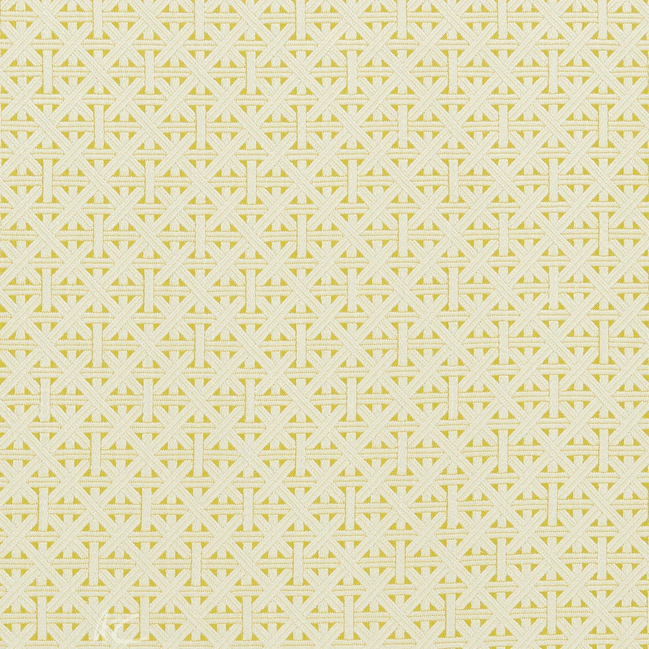 Clarke and Clarke  Colony Cabana Citron Curtain Fabric