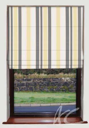Prestigious Textiles Templeton Downing Mimosa Roman Blind