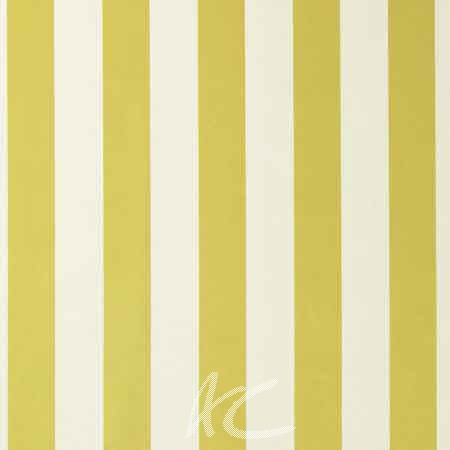Clarke and Clarke Chateau St James Stripe Acacia Curtain Fabric