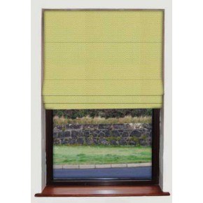 April Showers Citrus Roman Blind