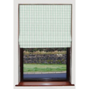 Bianca Spearmint Roman Blind