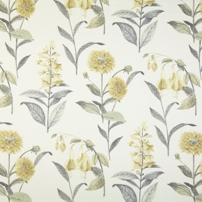 Prestigious Textiles Charterhouse Bloomingdale Chartreuse Curtain Fabric