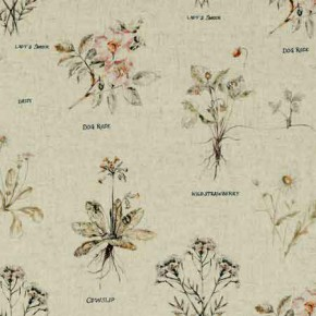 Clarke and Clarke Countryside Botanist Linen Curtain Fabric