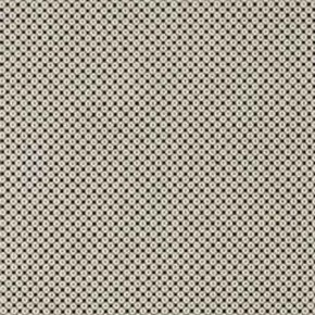 Clarke and Clarke BW1033 Black and White Curtain Fabric