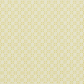 Clarke and Clarke  Colony Cabana Citron Curtain Fabric