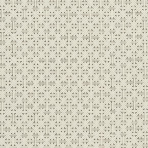Clarke and Clarke  Colony Cabana Taupe Curtain Fabric