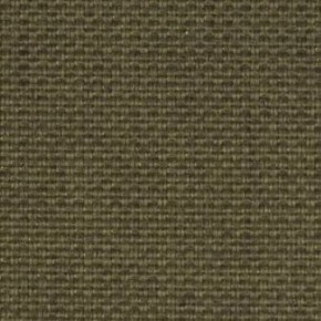 Clarke and Clarke Cadiz Olive Curtain Fabric