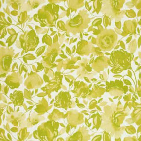 Clarke and Clarke Artbook Caitlin Linen Citrus Curtain Fabric
