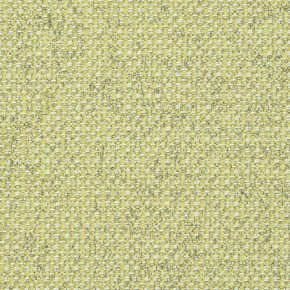 Clarke and Clarke Casanova Acacia Curtain Fabric