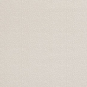 Clarke and Clarke Salon Ecaille Natural Curtain Fabric