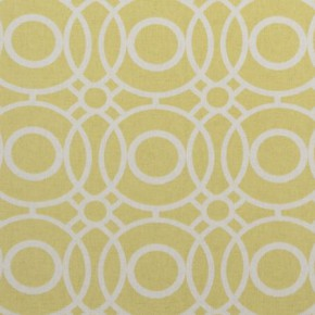 Clarke and Clarke Folia Eclipse Citrus Curtain Fabric