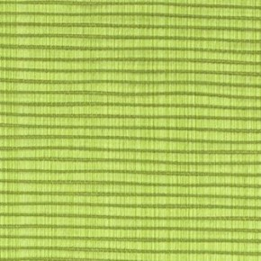Clarke and Clarke Fenton Lime Roman Blind