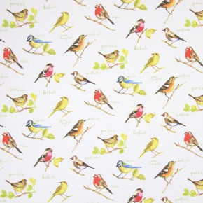 Country Fair Garden Birds Watercolour Curtain Fabric