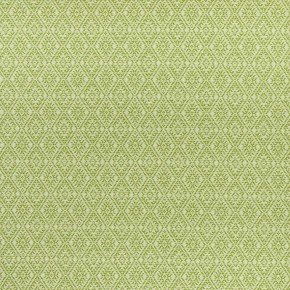 Clarke and Clarke Halcyon Hampstead Apple Curtain Fabric