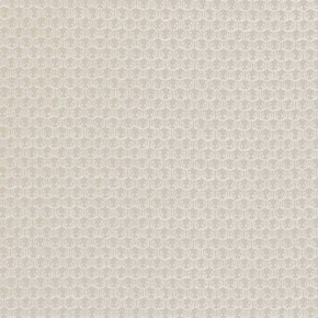 Clarke and Clarke Salon Honore Natural Curtain Fabric