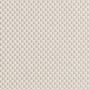 Clarke and Clarke Maximus Cream Curtain Fabric