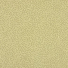 Platinum Mineral Citron Curtain Fabric