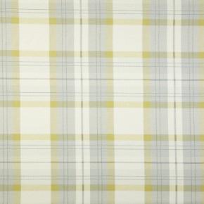 Prestigious Textiles Charterhouse Munro Chartreuse Curtain Fabric