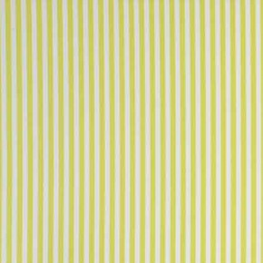 Clarke and Clarke Garden Party Party Stripe Citrus Curtain Fabric