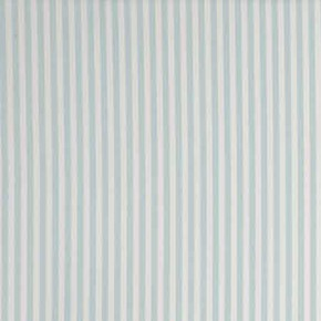 Clarke and Clarke Garden Party Party Stripe Mineral Curtain Fabric