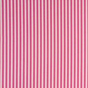 Clarke and Clarke Garden Party Party Stripe Raspberry Curtain Fabric