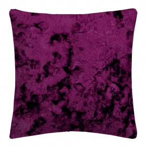 Clarke_crush_crush_violet