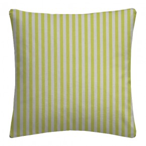 Clarke and Clarke Garden Party Party Stripe Citrus Cushion Covers