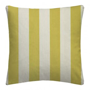 Clarke and Clarke Chateau St James Stripe Acacia Cushion Covers