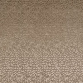 Clarke and Clarke Tempo Pulse Taupe Roman Blind