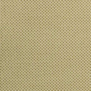 Lazzaro Stella Citrus Curtain Fabric