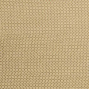 Clarke and Clarke Lazzaro Stella Gold Roman Blind