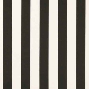 Clarke and Clarke Chateau St James Stripe Noir Curtain Fabric
