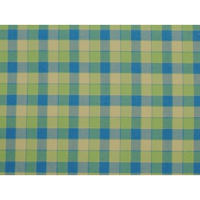 Springfield Track Apple Curtain Fabric
