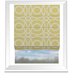 Clarke and Clarke Folia Eclipse Citrus Roman Blind