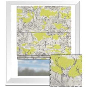 Clarke and Clarke Garden Party Manor Toile Citrus Roman Blind